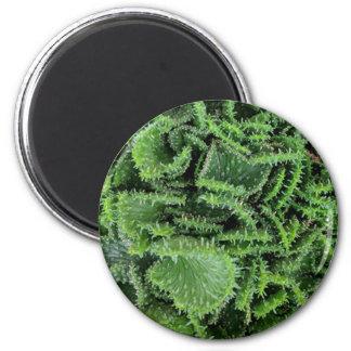 Cactus 2 Inch Round Magnet