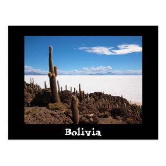 Cactus and Salar de Uyuni text postcard