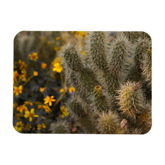 cactus and wildflowers rectangular photo magnet