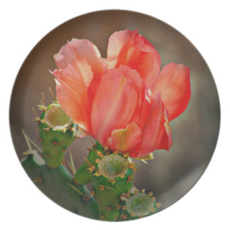 Cactus Bloom in Red Melamine Plate