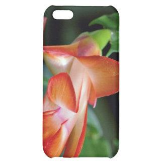 Cactus blossom Edmonton Canada flowers iPhone 5C Case