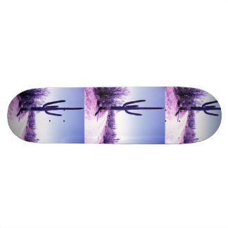 cactus board skateboard deck
