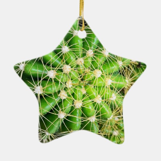 Cactus Dble-Sided Star Ornament
