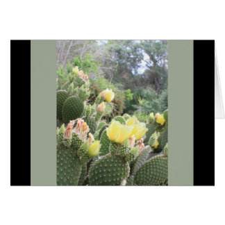 Cactus Flower Blank Note Card