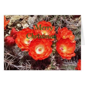 Cactus Flower Christmas Card