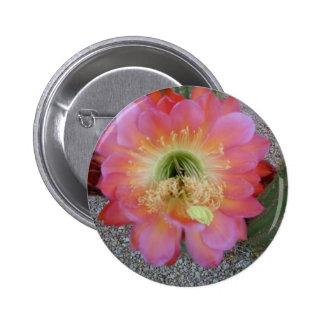 Cactus Flower in Arizona 2 Inch Round Button