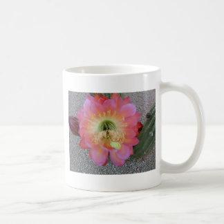 Cactus Flower in Arizona Classic White Coffee Mug