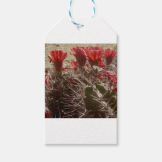 Cactus Flower Original Gift Tags