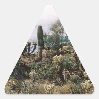 Cactus Garden Triangle Sticker