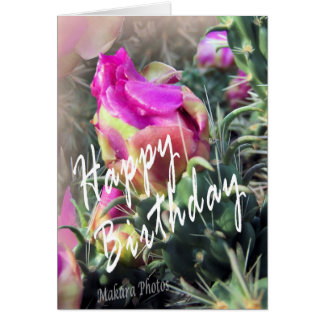 Cactus in bloom Bday Greeting Card