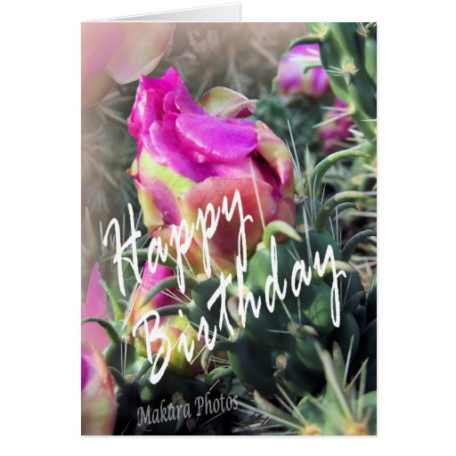 Cactus in bloom Bday Greeting Cards