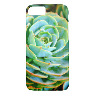 Cactus iPhone 8/7 Case