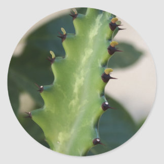 Cactus Leaf Round Sticker