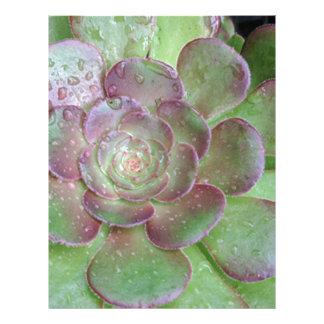 Cactus Letterhead Design