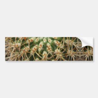 Cactus May 2013 Bumper Sticker