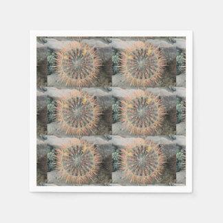 Cactus napkin 2 paper napkins