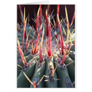 Cactus notecard
