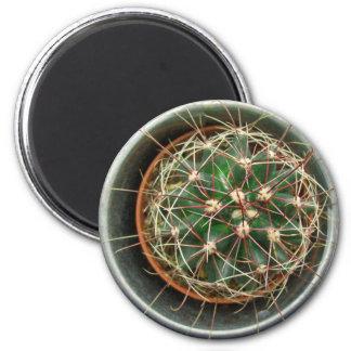 Cactus on Fridge 2 Inch Round Magnet