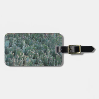 Cactus Patch Luggage Tag