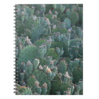 Cactus Patch Spiral Notebooks