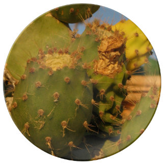 Cactus Photo  Decorative Porcelain Plate