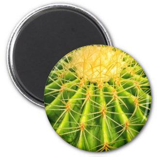 Cactus Round Magnet