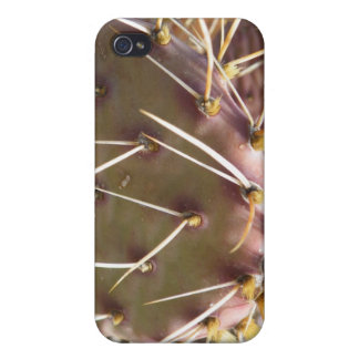 Cactus spines - Don't Touch Me! iPhone 4 Cover
