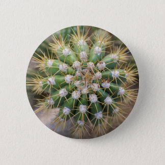 Cactus Top 2 Inch Round Button