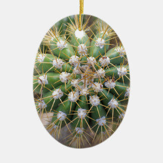 Cactus Top Ceramic Ornament