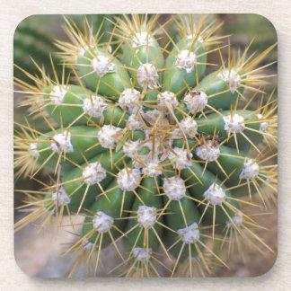 Cactus Top Coaster