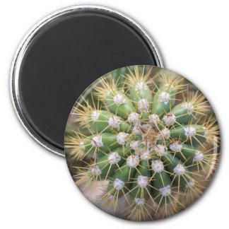 Cactus Top Magnet