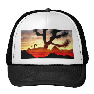 cactus vision mesh hats