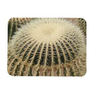 """Cactus W/Thorns 3""""x4"""" Magnet"""