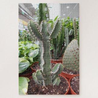 Cactus World Jigsaw Puzzle