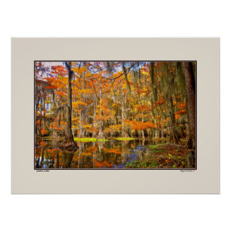 Caddo Lake - Autumn - Texas Poster