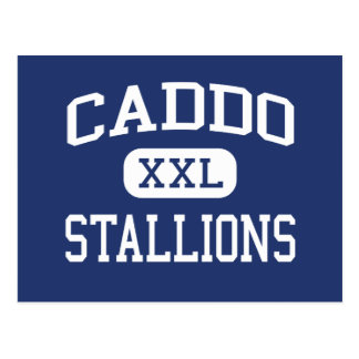 Caddo Stallions Middle Shreveport Louisiana Postcard