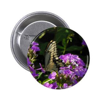 Cadeau de photo de papillon macaron rond 5 cm