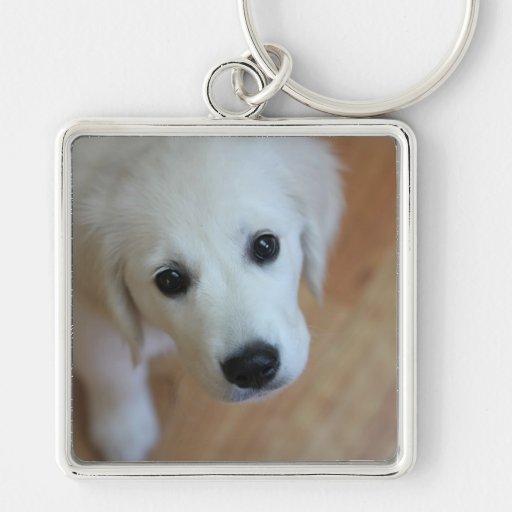 Cadeau pour des amoureux des animaux porte-clef