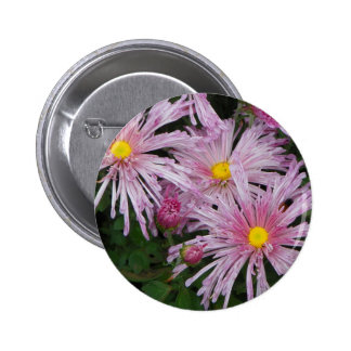 Cadeau rose de photo de fleur macaron rond 5 cm