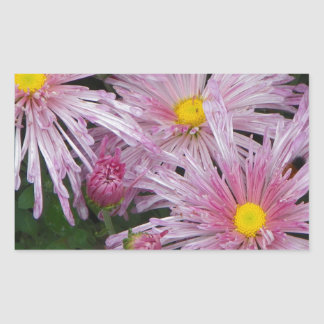 Cadeau rose de photo de fleur sticker rectangulaire