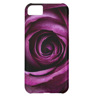 Cadeaux Girly de beaux de pourpre de rose pétales Coque iPhone 5C