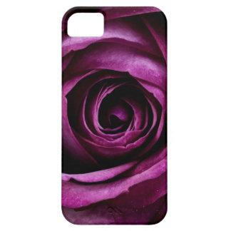 Cadeaux Girly de beaux de pourpre de rose pétales Coques Case-Mate iPhone 5