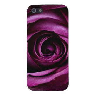 Cadeaux Girly de beaux de pourpre de rose pétales Étui iPhone 5