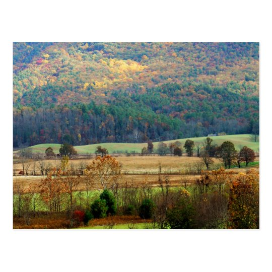 Cades Cove Autumn - Great Smoky Mountains Postcard