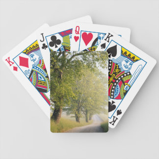 Cades Cove | Great Smokey Mountains, TN Bicycle Playing Cards