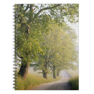 Cades Cove | Great Smokey Mountains, TN Notebook