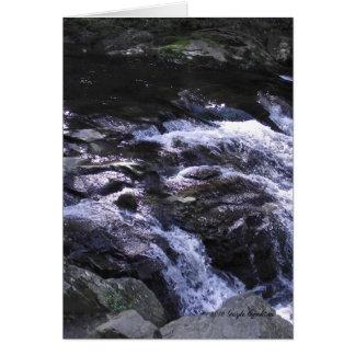 Cades Cove mountain stream Card