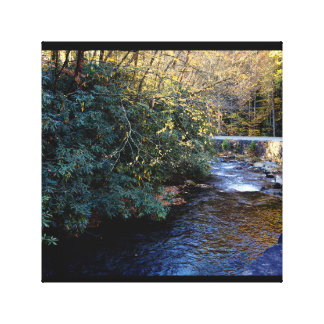 Cades Cove River Smoky Mountains Canvas Print