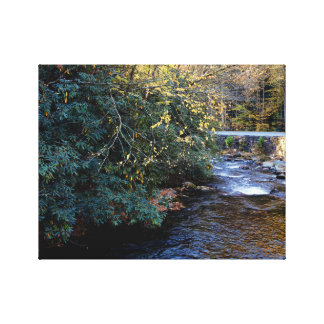 Cades Cove River Smoky Mountains Canvas Print