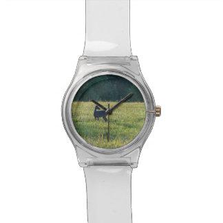 Cades Deer Watch